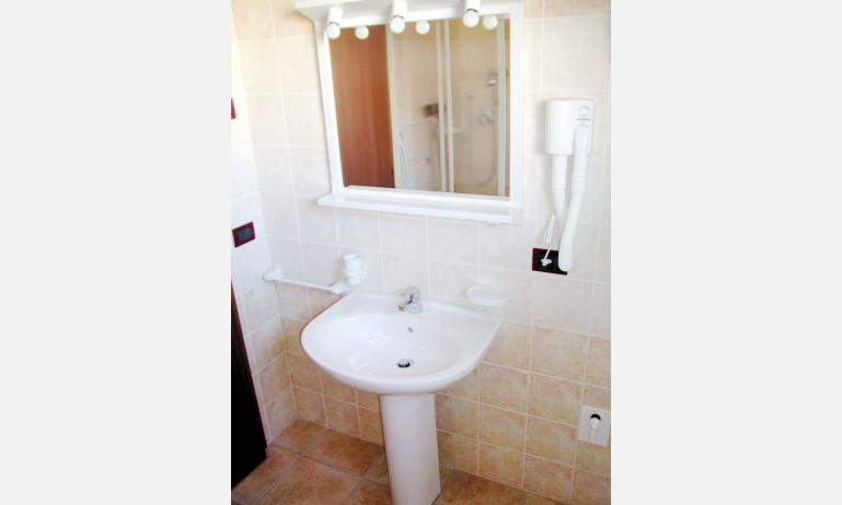 residence AI SALICI: bagno (esempio)