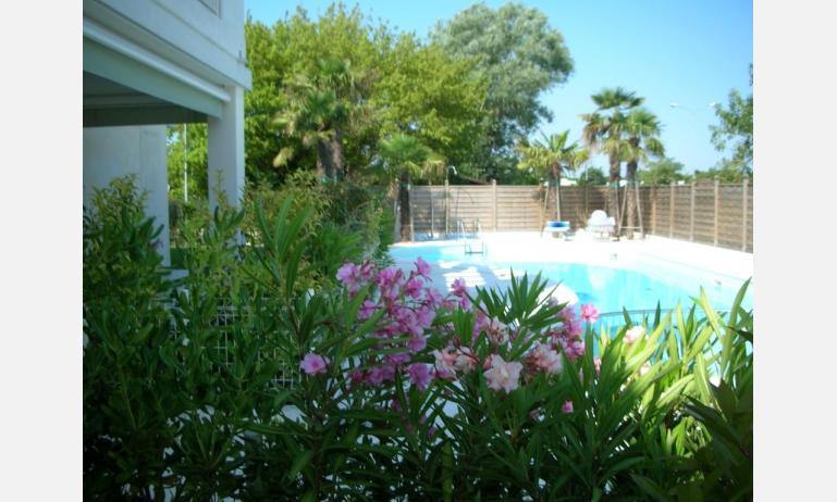 residence LE PALME: C6 - terrazzo vista piscina (esempio)