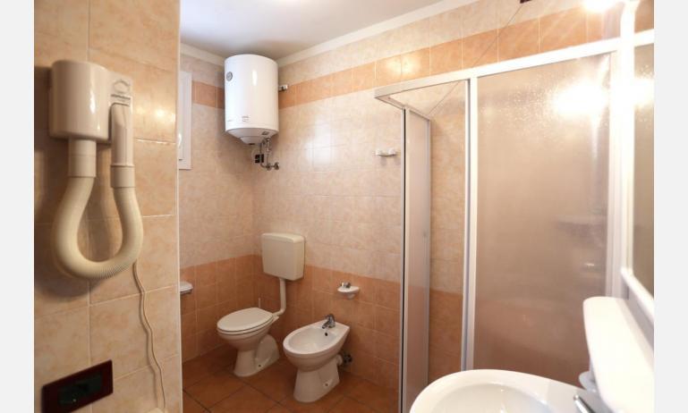 residence ALLE FARNIE: B5V - bagno con box doccia (esempio)